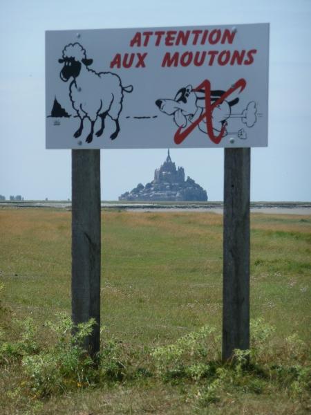 mont-saint-michel paysages 083